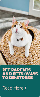 Pet Parents and Pets: Ways to De-Stress - Read More