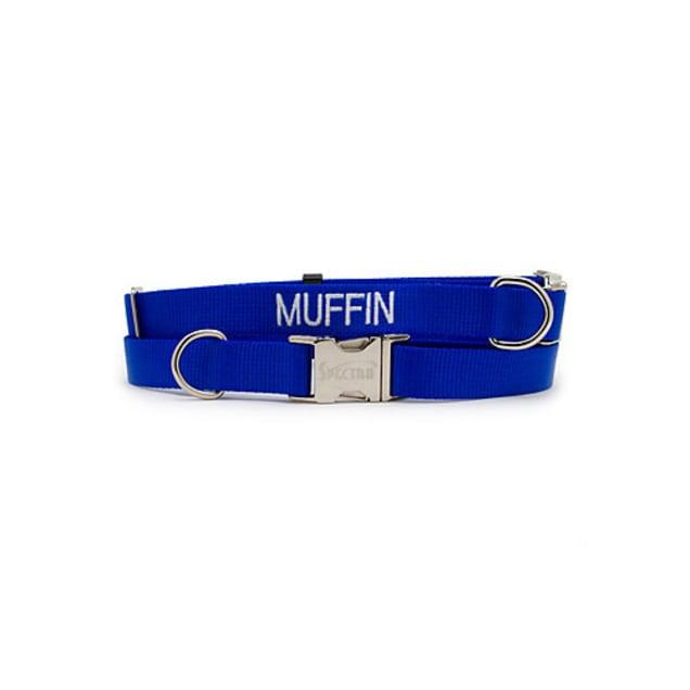 "Coastal Pet Personalized Adjustable Nylon Spectra Collar in Blue, 3/4"" Width - Carousel image #1"