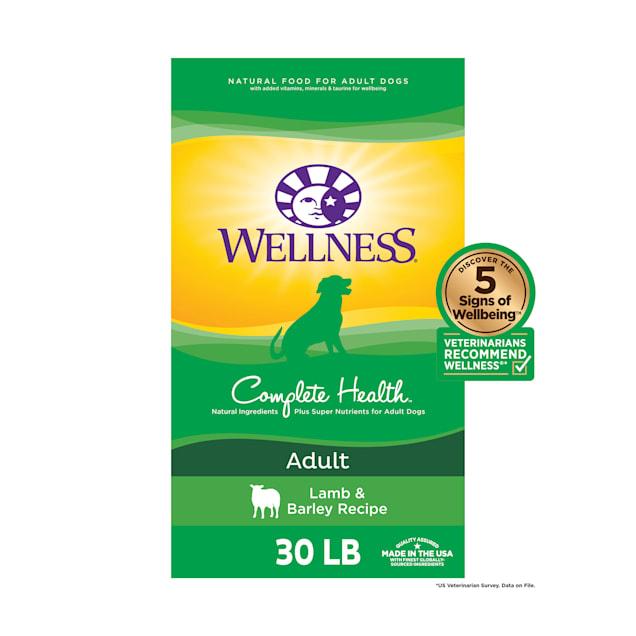 Wellness Complete Health Natural Lamb, Barley Meal Recipe Dry Dog Food, 30 lbs. - Carousel image #1