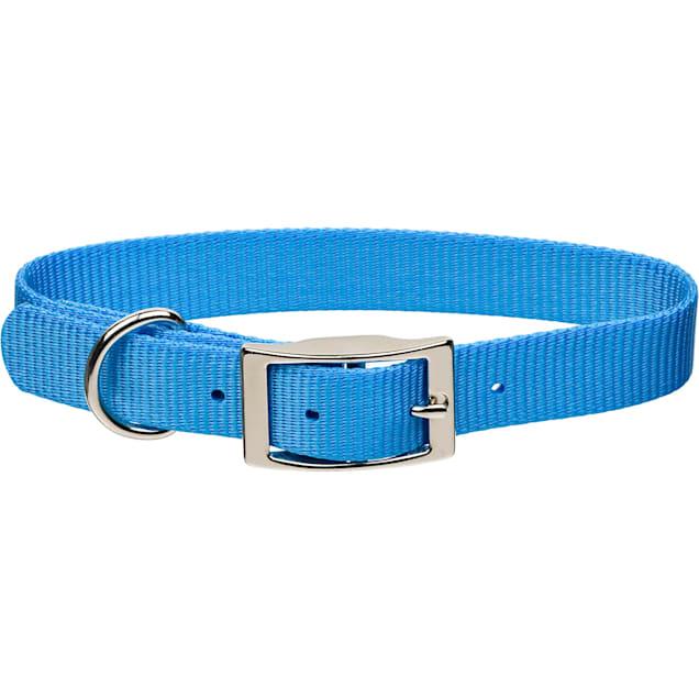 "Coastal Pet Metal Buckle Nylon Personalized Dog Collar in Light Blue, 3/4"" Width - Carousel image #1"