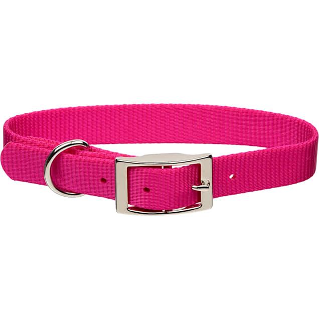 "Coastal Pet Metal Buckle Nylon Personalized Dog Collar in Pink Flamingo, 3/4"" Width - Carousel image #1"