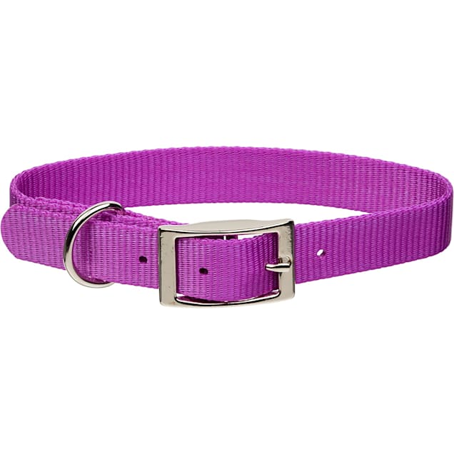 "Coastal Pet Metal Buckle Nylon Personalized Dog Collar in Orchid, 3/8"" Width - Carousel image #1"