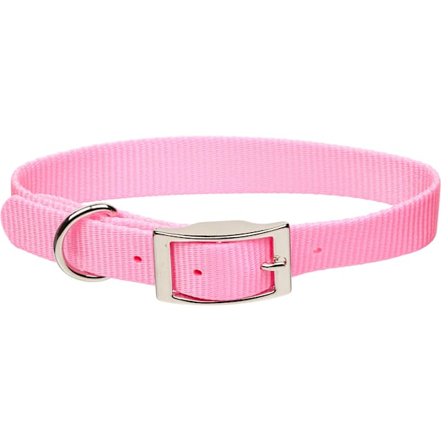 """Coastal Pet Metal Buckle Nylon Personalized Dog Collar in Bright Pink, 3/8"""" Width - Carousel image #1"""