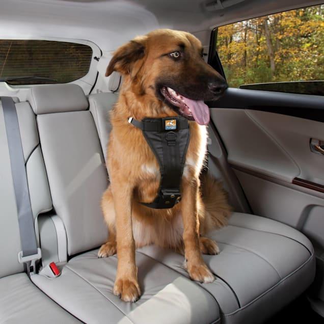 Kurgo Black Tru-Fit Crash Tested Dog Car Harness, Large - Carousel image #1