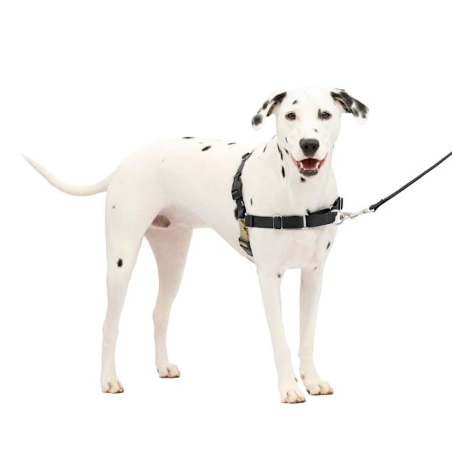 PetSafe Easy Walk Black Dog Harness, Medium/Large - Carousel image #1