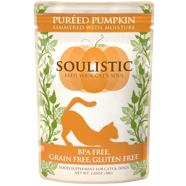 Soulistic Pureed Pumpkin Food Supplement for Cats & Dogs, 1.05 oz., Case of 12 - Carousel image #1