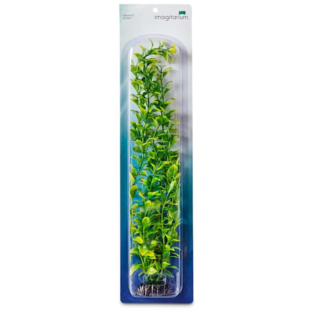 Imagitarium X-Large Background Plastic Aquarium Plant - Carousel image #1