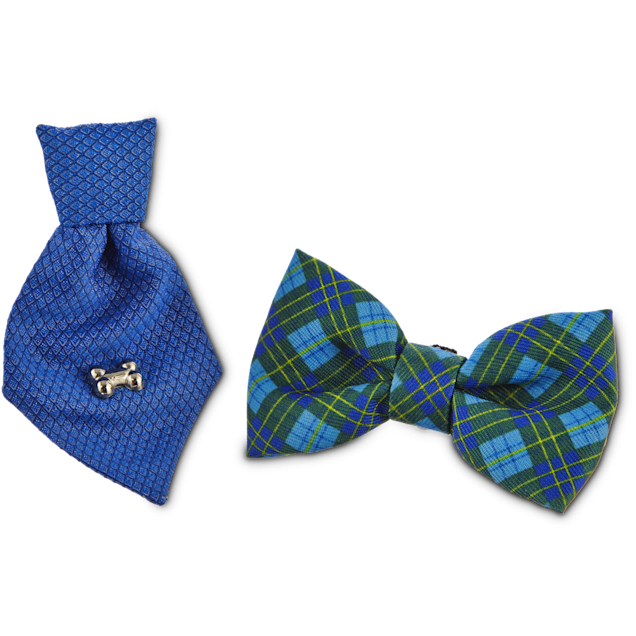 Bond & Co. Blue Bowtie Set for Small Dogs, Small - Carousel image #1