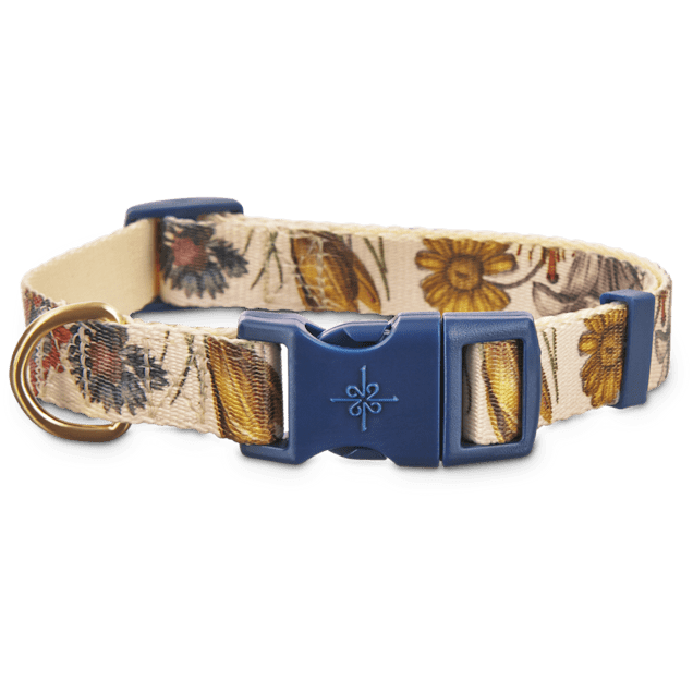 Good2Go Wildflower Print Dog Collar, Large - Carousel image #1