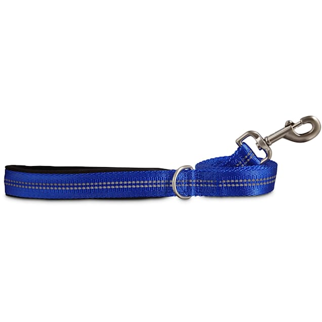 Good2Go Reflective Leash in Blue, 6 ft. - Carousel image #1
