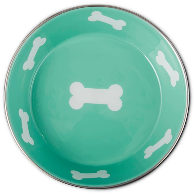 Harmony Teal Enameled Stainless Steel Dog Bowl, 6 Cups - Carousel image #1