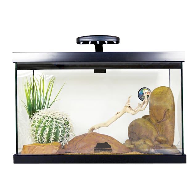 Exo Terra Leopard Gecko Starter Kit - Carousel image #1