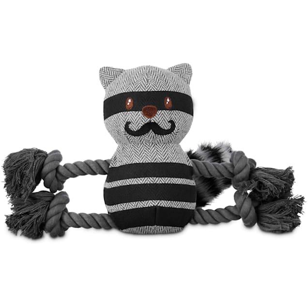 Leaps & Bounds Wildlife Plush and Rope Raccoon Dog Toy, Medium - Carousel image #1