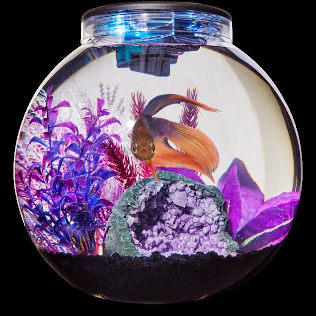 Imagitarium Freshwater Globe Kit, 3.1 GAL - Carousel image #1