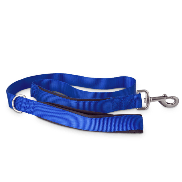 Good2Go Blue 2-in-1 Dog Leash, 4 ft. - Carousel image #1
