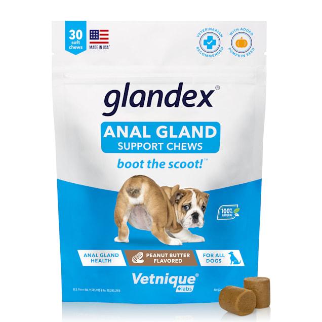 anal glands fiber Canine