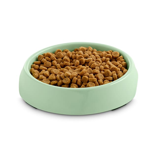 Harmony Mint Single Cat Bowl Base, 3/4 Cup - Carousel image #1