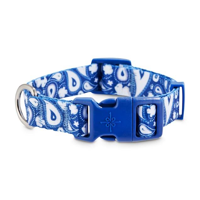 Good2Go Blue Paisley Dog Collar, Small - Carousel image #1