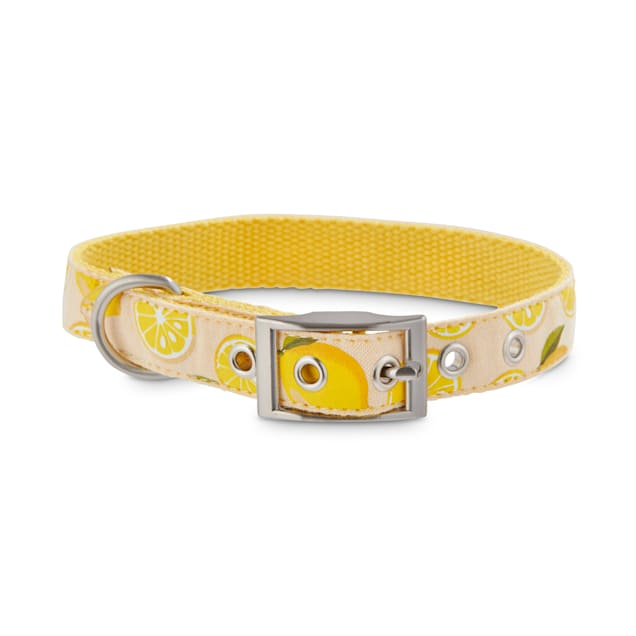 Bond & Co. Lemonade Dog Collar, Small - Carousel image #1