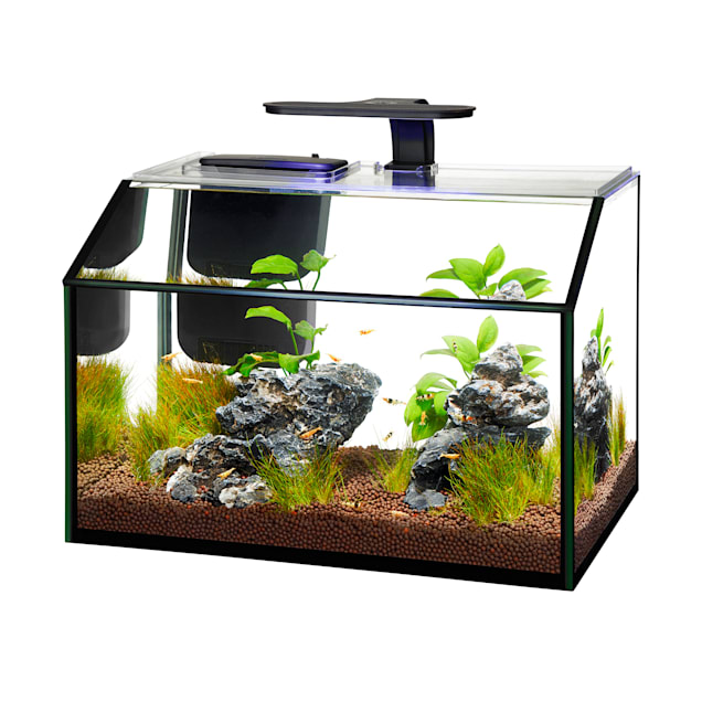 Aqueon LED 8.75 Gallon Shrimp Aquarium Kit - Carousel image #1