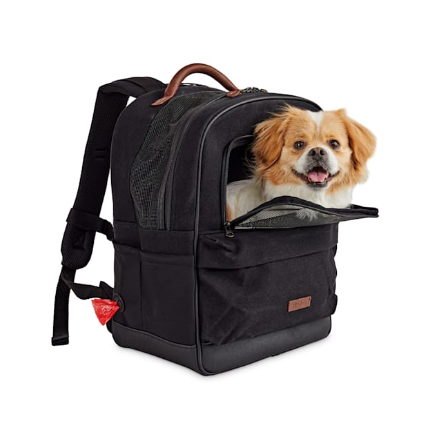 "Reddy Black Cotton Canvas Pet Carrier Backpack, 16"" H x 13"" W x 8"" D - Carousel image #1"