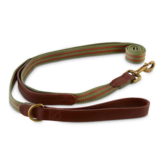 Reddy Olive Webbed Nylon Dog Leash, 6 ft. - Carousel image #1