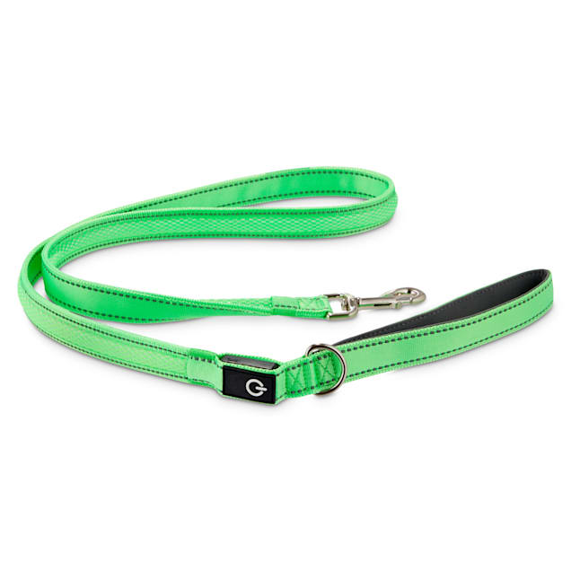 Good2Go Neon Green LED Light-Up Dog Leash, 5 ft. - Carousel image #1