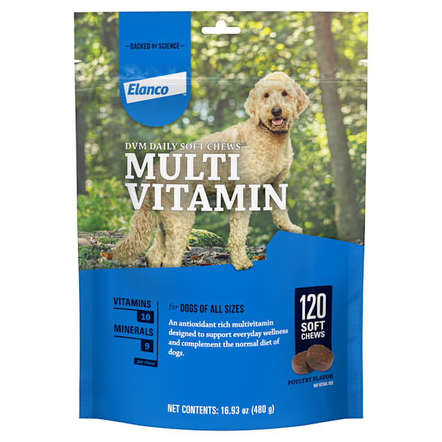 Bayer DVM Daily Soft Chews Multivitamin for Dogs, Count of 120 - Carousel image #1