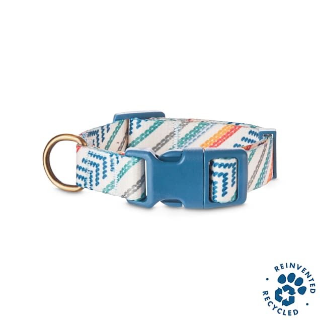 Bond & Co. Recycled & Reinvented Baja Dog Collar, Small - Carousel image #1