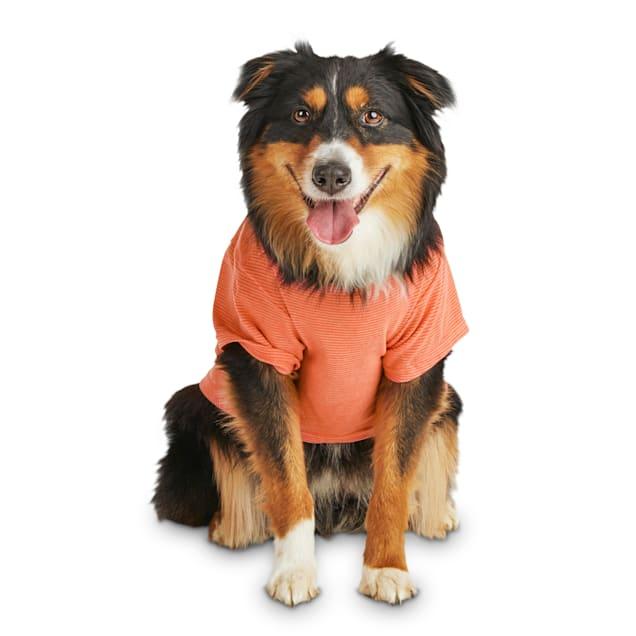 Reddy Orange Striped Jersey Crewneck Dog T-Shirt, X-Small - Carousel image #1