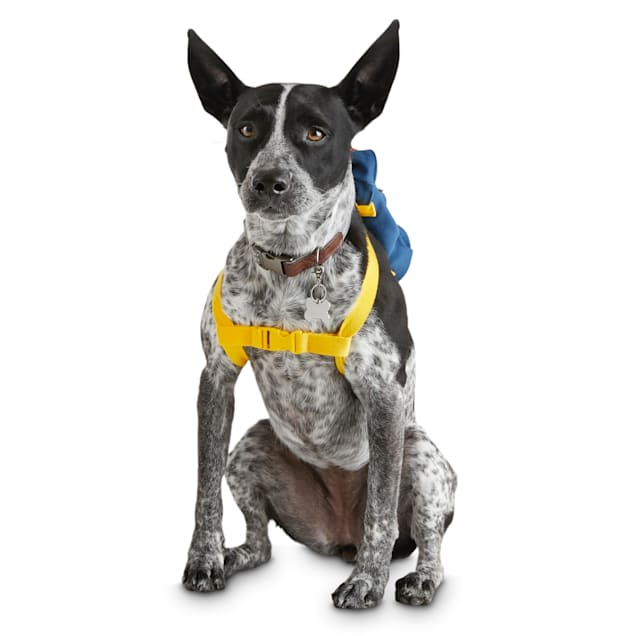 Reddy Navy Canvas Dog Backpack, X-Small/Small - Carousel image #1