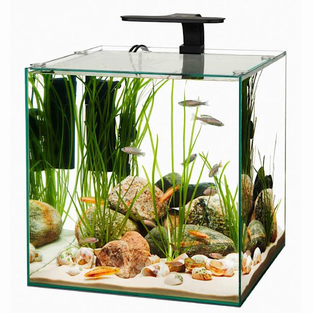 Aqueon Frameless Cube Aquarium, 14 Gallon - Carousel image #1