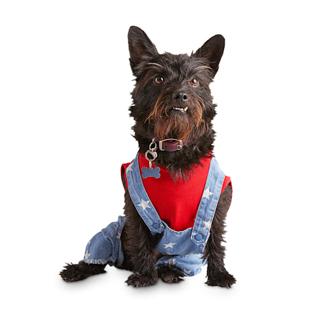 Bond & Co. A Star Overall Dog Jumpsuit, XX-Small - Carousel image #1