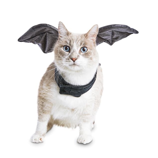 Bootique Bratty Batty Cat Costume, One Size - Carousel image #1
