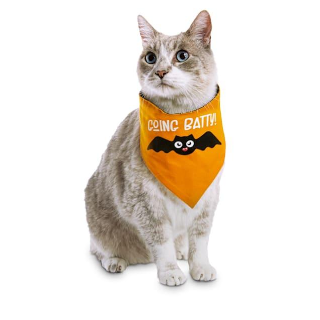 Bootique Bratty Batty Halloween Glow-in-the-Dark Reversible Pet Bandana, Small/Medium - Carousel image #1