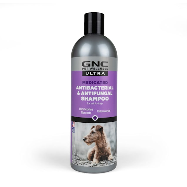 GNC Ultra Medicated Anti-Bacterial Anti-Fungal Dog Shampoo, 16 fl. oz. - Carousel image #1
