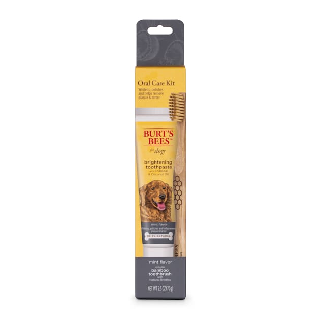 Burt's Bees Care Plus+ Charcoal & Coconut Oil Brightening Toothpaste & Toothbrush for Dogs, 0.33 lb. - Carousel image #1
