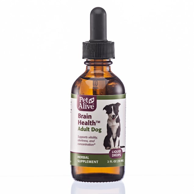PetAlive Brain Liquid Drops Natural Herbal Supplement for Vitality, Concentration and Alertness for Adult Dogs, 2 fl. oz. - Carousel image #1