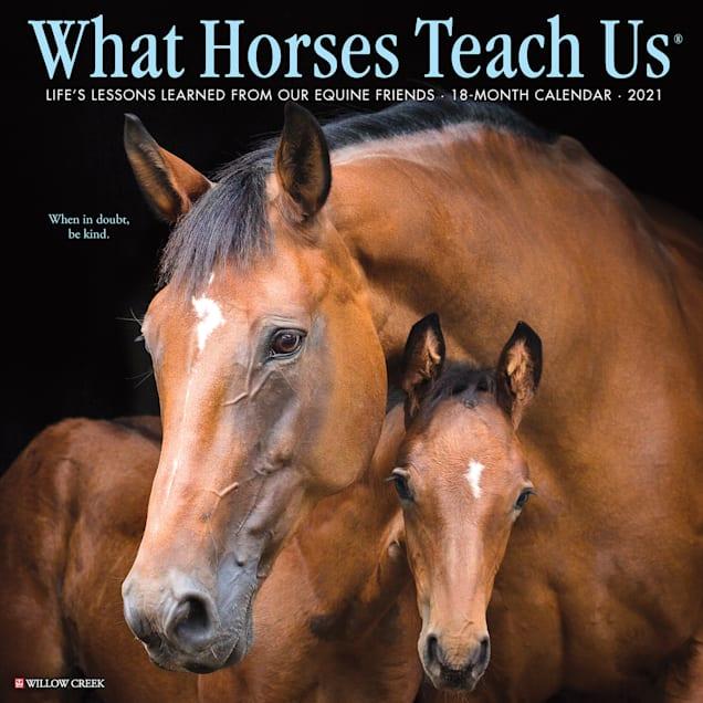 Willow Creek Press What Horses Teach Us 2021 Calendar, Large - Carousel image #1