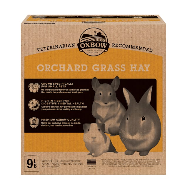Oxbow Orchard Grass Hay for Rabbit, 9 lbs. - Carousel image #1