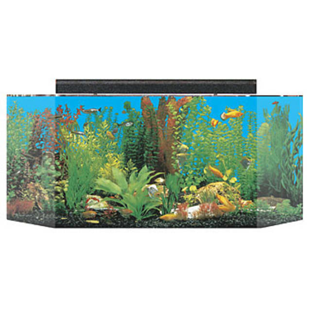 SeaClear 26 Gallon Flatback Hexagon Aquarium Combo, Clear - Carousel image #1