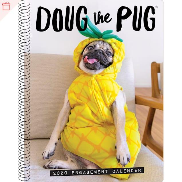 Willow Creek Press Doug The Pug 2020 Engagement Calendar - Carousel image #1