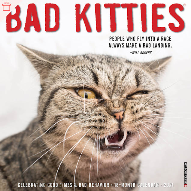 Willow Creek Press Bad Kitties 2021 Calendar, Large - Carousel image #1