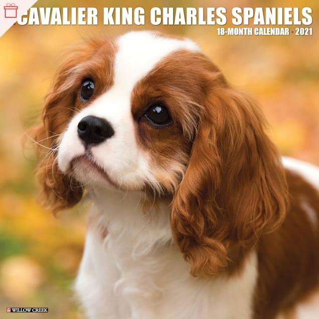 Willow Creek Press Cavalier King Charles Spaniels 2021 Calendar, Large - Carousel image #1
