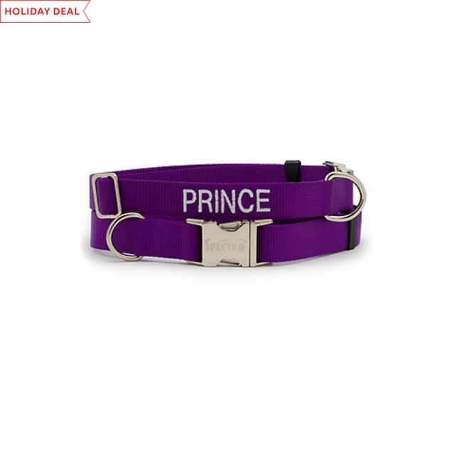 "Coastal Pet Personalized Adjustable Nylon Spectra Collar in Purple, 1"" Width - Carousel image #1"