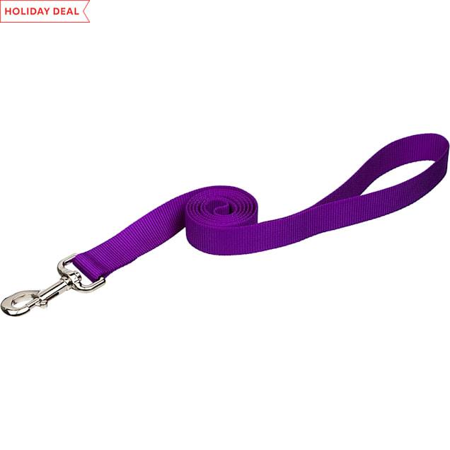 "Coastal Pet Nylon Personalized Dog Leash in Purple, 6' L X 1"" W - Carousel image #1"