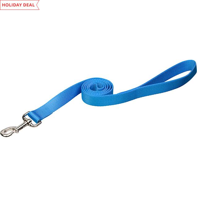 "Coastal Pet Nylon Personalized Dog Leash in Light Blue, 6' L X 1"" W - Carousel image #1"