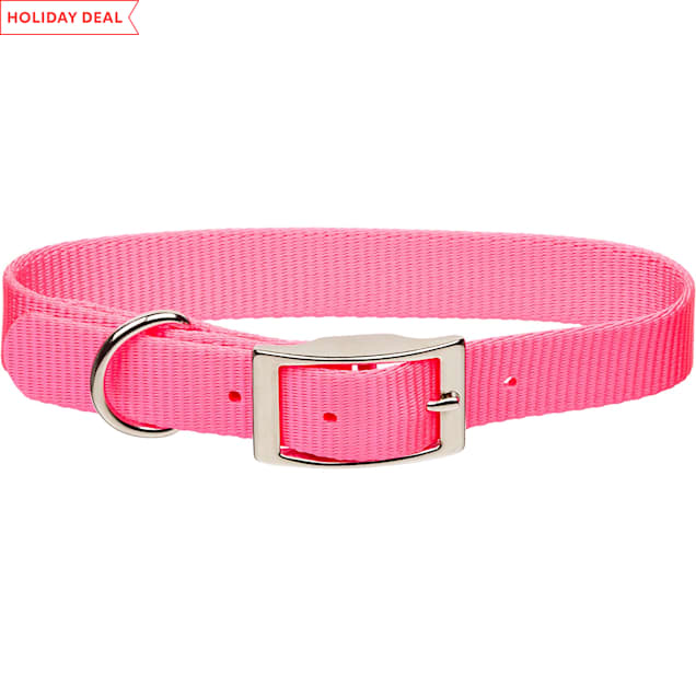 "Coastal Pet Metal Buckle Nylon Personalized Dog Collar in Neon Pink, 3/4"" Width - Carousel image #1"