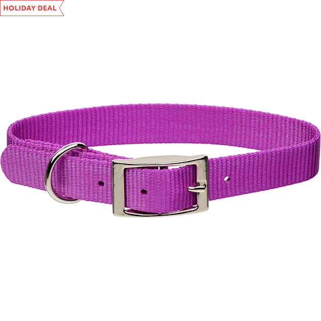 """Coastal Pet Metal Buckle Nylon Personalized Dog Collar in Orchid, 3/4"""" Width - Carousel image #1"""