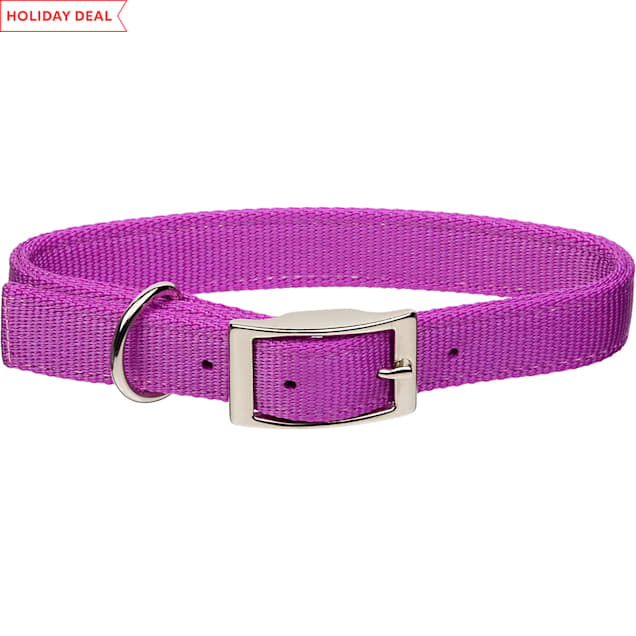 """Coastal Pet Metal Buckle Double Ply Nylon Personalized Dog Collar in Orchid, 1"""" Width - Carousel image #1"""